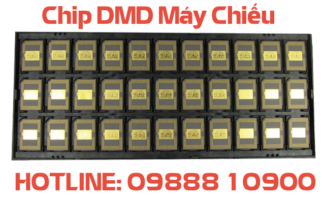 chip dmd may chieu